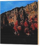 Scarlet Cliffs Wood Print