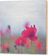 Scarlet Poppies In Painterly Style Wood Print