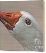 Scary Goose Wood Print