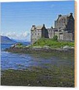 Scenic Castle Wood Print
