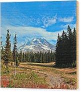 Scenic Mt. Hood In Oregon Wood Print