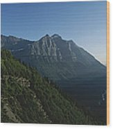 Scenic Overlook In Glacier National Wood Print