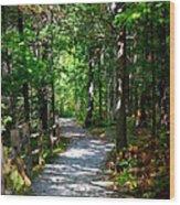 Scenic Pathway Wood Print