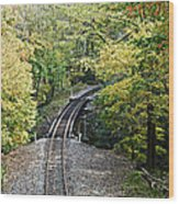 Scenic Railway Tracks Wood Print