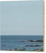Scenic Sea Shore Wood Print