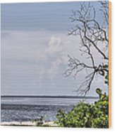 Scenic View At Emerson Point Wood Print