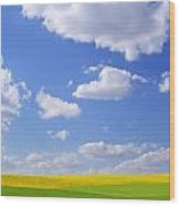 Scenic View Of Meadow And Canola Crop Wood Print