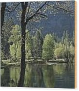 Scenic View Of The Merced River Wood Print