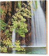 Scenic Waterfall In Autumn Wood Print