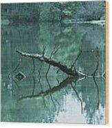 Scenic Woodland Lake Wood Print