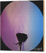 Schlieren Image Of A Roses Aroma Wood Print