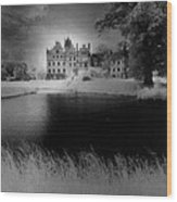 Schloss Basedow Wood Print