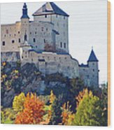 Schloss Tarasp Switzerland Wood Print