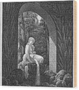 Schoenbrunn Palace, 1823 Wood Print