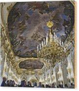 Schonbrunn Palace - Vienna Wood Print
