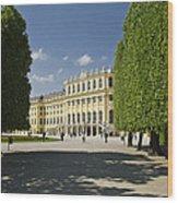 Schonbrunn Palace Vienna Austria Wood Print