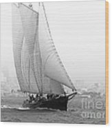 Schooner By The Bay Wood Print by Patty Descalzi