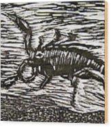 Scorpion Wood Print by Marita McVeigh