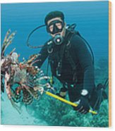 Scuba Diver With Spear Of Invasive Wood Print