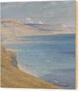 Sea And Sunshine   Lyme Regis Wood Print