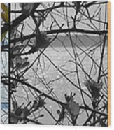 Sea Beyond The Branches Wood Print