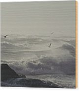 Sea Birds Fly Above Large Waves Wood Print