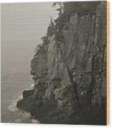 Sea Cliff At Quoddy Head  Wood Print