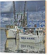 Sea Hawk Under Cover Wood Print