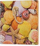 Sea Horse Starfish And Seashells  Wood Print