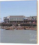Sea Lions At Pier 39 San Francisco California . 7d14273 Wood Print