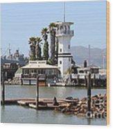 Sea Lions At Pier 39 San Francisco California . 7d14294 Wood Print