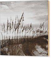 Sea Oats 1 Wood Print