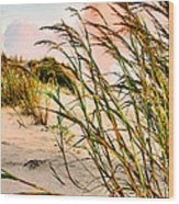 Sea Oats And Dunes Wood Print by Kristin Elmquist