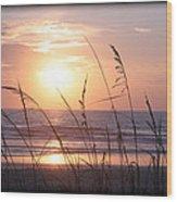 Sea Oats Beach Sunrise Wood Print