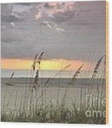 Sea Oats - Boca Grande Wood Print