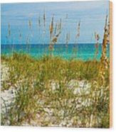 Sea Oats Gulf - Destin Wood Print