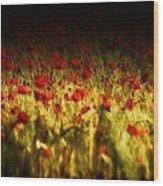 Sea Of Red Wood Print
