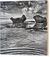 Sea Ripples Wood Print
