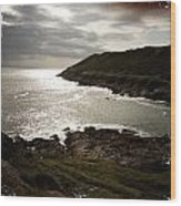 Sea Scape On The Gower Wood Print