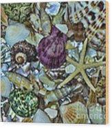 Sea Treasure - Square Format Wood Print