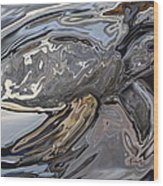 Sea Turtle At Risk Wood Print