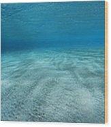 Seabed Wood Print