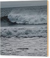 Seagull And Surf Wood Print