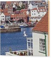 Seagull At Whitby Harbor Wood Print by Axiom Photographic