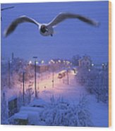 Seagull At Winter Wood Print by Nafets Nuarb