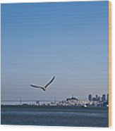 Seagull Flying Over San Francisco Bay Wood Print by David Buffington