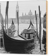 Seagull From Venice - Venezia Wood Print