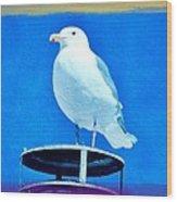 Seagull Fun Colors Wood Print