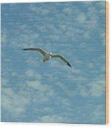 Seagull In Sky Wood Print