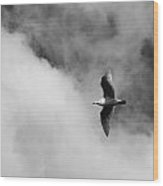 Seagull In The Clouds Wood Print by Twenty Two North Photography